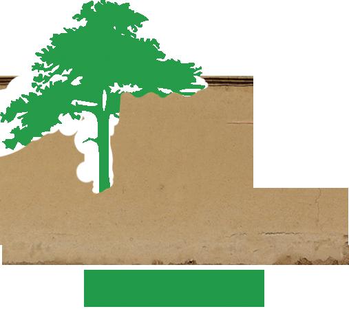 Mazrachoo